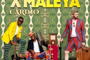 "X-Maleya, le trio de choc, sort un nouvel album intitulé ""Cardio"""